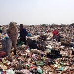 Picking through the rubbish on KM36 landfill site.